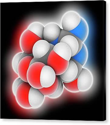 Tetrodotoxin Neurotoxin Molecule Canvas Print by Laguna Design