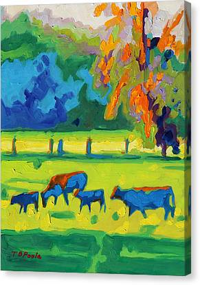 Texas Cows At Sunset Oil Painting Bertram Poole Apr14 Canvas Print