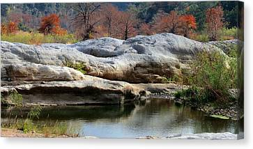 Canvas Print featuring the photograph Texas Fall Colors by David  Norman