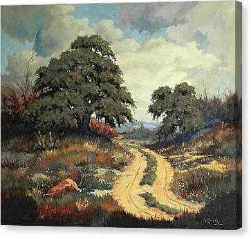 Texas Hill Country Canvas Print by Bob Hallmark