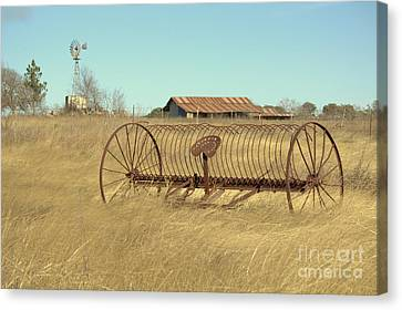 Texas Hill Country Farmscape Canvas Print by Joe Jake Pratt