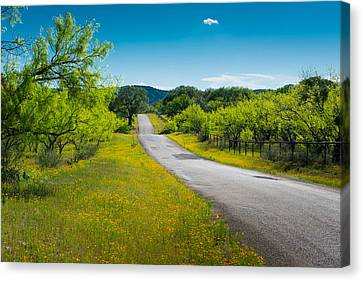 Canvas Print featuring the photograph Texas Hill Country Road by Darryl Dalton