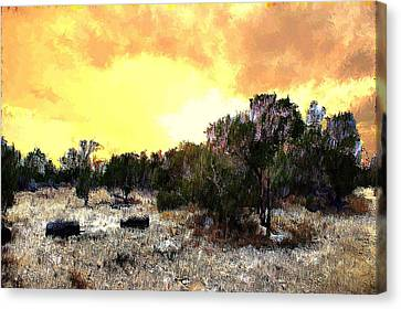 Texas Hill Country Canvas Print