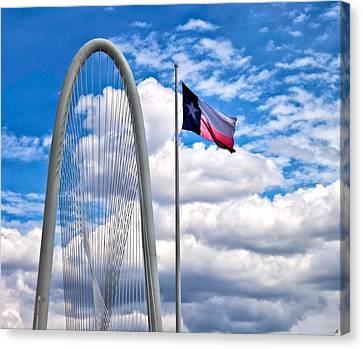 Texas Canvas Print by John Hesley
