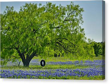 Canvas Print featuring the photograph Texas Life - Bluebonnet Wildflowers Landscape Tire Swing by Jon Holiday