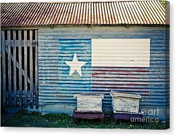 Texas Love Canvas Print by Will Cardoso