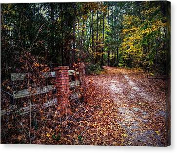 Texas Piney Woods Canvas Print by Linda Unger