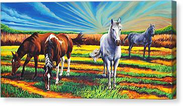 Texas Quarter Horses Canvas Print by Greg Skrtic