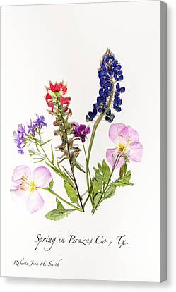 Texas Spring Flowers Canvas Print