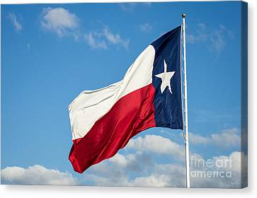 State Flag Of Texas Canvas Print