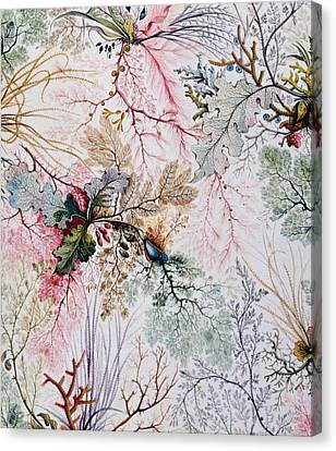 Textile Design Canvas Print by William Kilburn