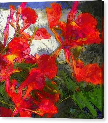 Textured Flamboyant Flowers - Square Canvas Print by Lyn Voytershark