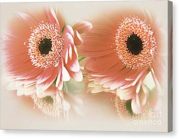 Textured Floral Artwork Canvas Print by Eden Baed