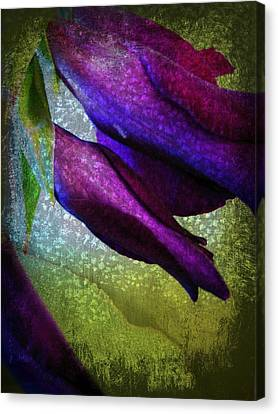 Textured Gladiola Buds Canvas Print by Shirley Sirois