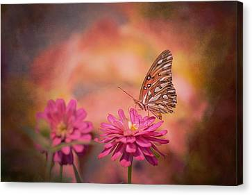 Textured Gulf Fritillary Canvas Print by Joel Olives