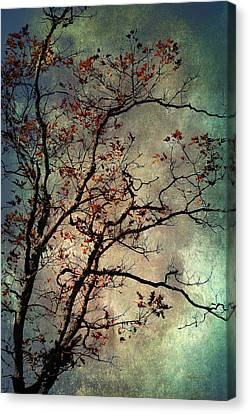 Nature Abstracts Canvas Print - Textured Oak Tree Art by Christina Rollo