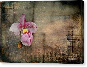 Canvas Print featuring the photograph Textured Orchid by Vicki DeVico