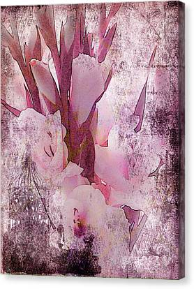 Canvas Print featuring the photograph Textured Pink Gladiolas by Sandra Foster