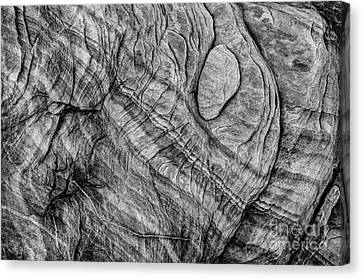 Textured Sandstone - Black And White - Valley Of Fire Canvas Print
