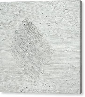 Textured Stone Background Canvas Print by Tom Gowanlock