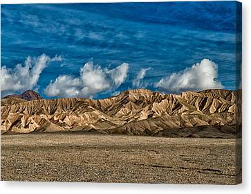 Textures Canvas Print by Cat Connor