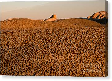 Textures In The Bisti Wilderness Canvas Print by Vivian Christopher