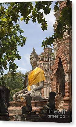 Thailand Ayutthaya Buddha Canvas Print by Colin and Linda McKie