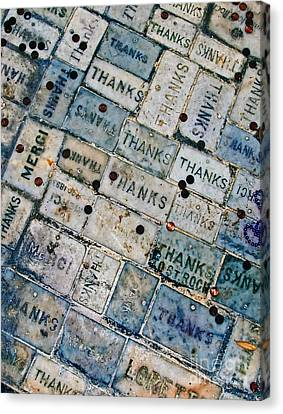 Thanks 3 - Color Canvas Print by Kathleen K Parker