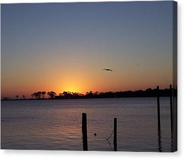 Canvas Print featuring the photograph Thanksgiving Sunrise by Michele Kaiser