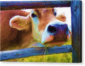 That's My Lunch Canvas Print by Ayse Deniz