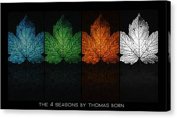 Canvas Print featuring the photograph The 4 Seasons By Thomas Born by Thomas Born
