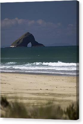 The 90 Mile Beach Canvas Print by Lucian Nistor