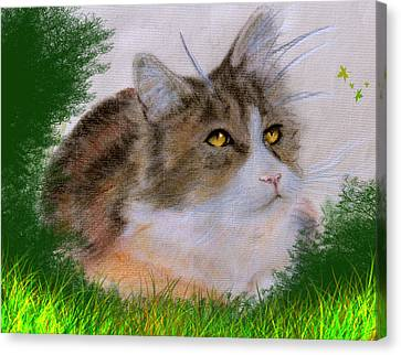The Abandoned Kitten Canvas Print by Cynthia Adams