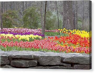 Canvas Print featuring the photograph The Abundance Of Spring by Robert Camp