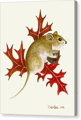 The Acorn Mouse Canvas Print by Lori Ziemba