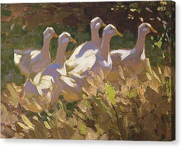 Flock Of Geese Canvas Print - The Adventurers by Edgar Downs