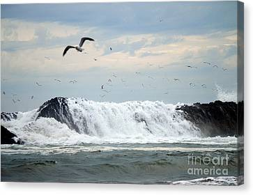 The Aftermath  Canvas Print by Sheldon Blackwell