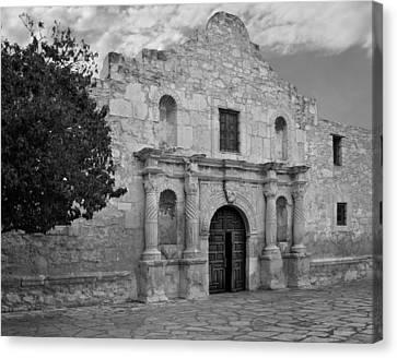 The Alamo Canvas Print by David and Carol Kelly