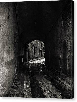 The Alley  Canvas Print by Steven  Taylor