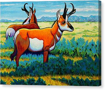 Pronghorn Antelope Canvas Print - The Alliance Pronghorn by Joe  Triano