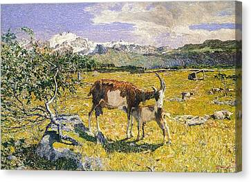 The Alps In May Canvas Print by Giovanni Segantini