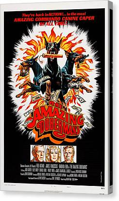 The Amazing Dobermans, Poster, Bottom Canvas Print by Everett