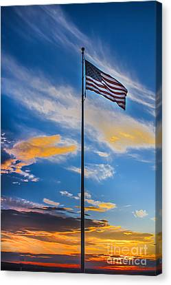 The American Beauty Canvas Print by Robert Bales