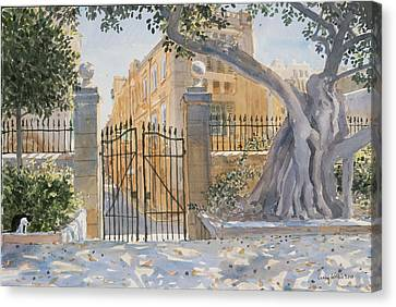Maltese Canvas Print - The Ancient Tree by Lucy Willis
