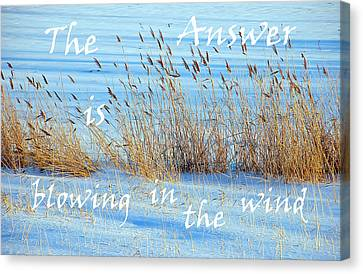The Answer Is Blowing In The Wind Canvas Print by Aimee L Maher Photography and Art Visit ALMGallerydotcom
