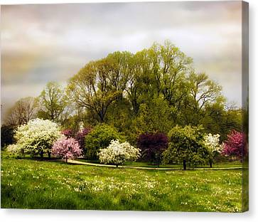 The Apple Orchard Canvas Print by Jessica Jenney