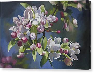 The Apple Tree Canvas Print by Alecia Underhill