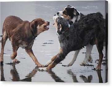 The Argument Canvas Print by Richard Hinger