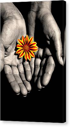 The Art Of Giving Canvas Print by Marwan Khoury