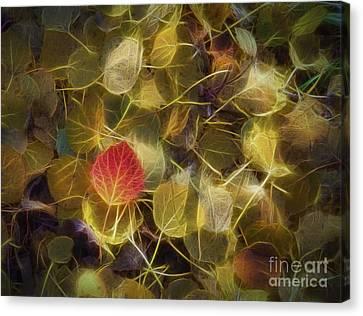 The Aspen Leaves Canvas Print by Veikko Suikkanen